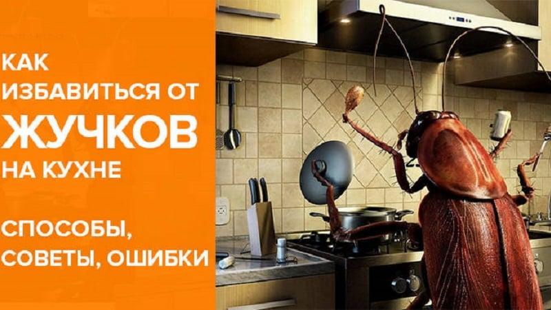 Как избавиться от жучков в крупе и в шкафу на кухне: инструкция