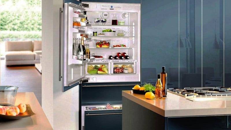 Какие бывают холодильники и их виды