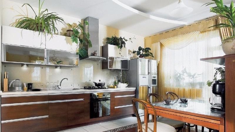 Неприхотливые растения и цветы для кухни
