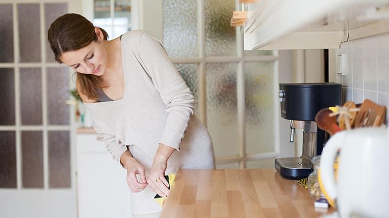 Как вывести мелких мошек на кухне