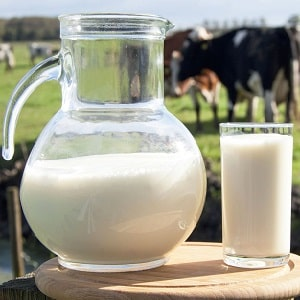 Какая должна быть температура для хранения молока