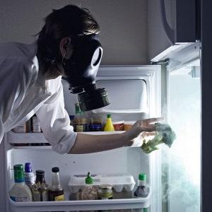 Как помыть пространство внутри холодильника правильно