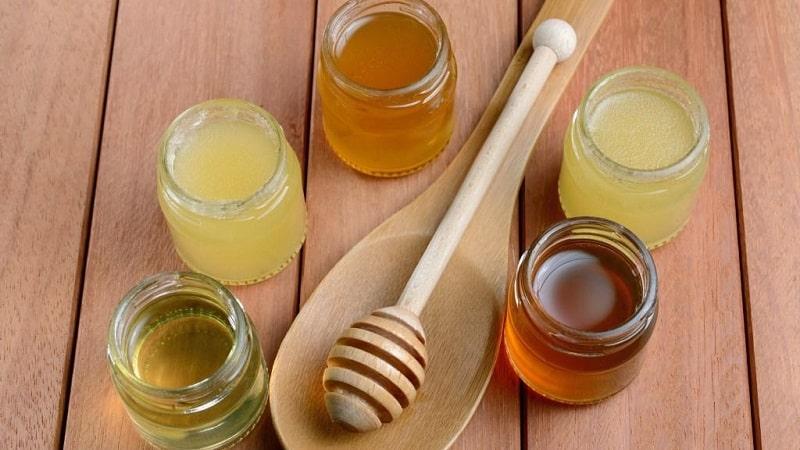 Хранение пчелиного меда дома — как правильно это делать