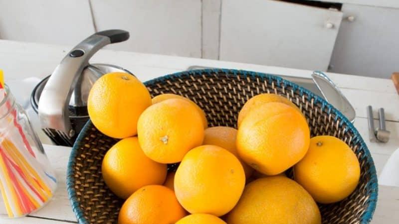 Правила хранения апельсинов: место, температура и влажность