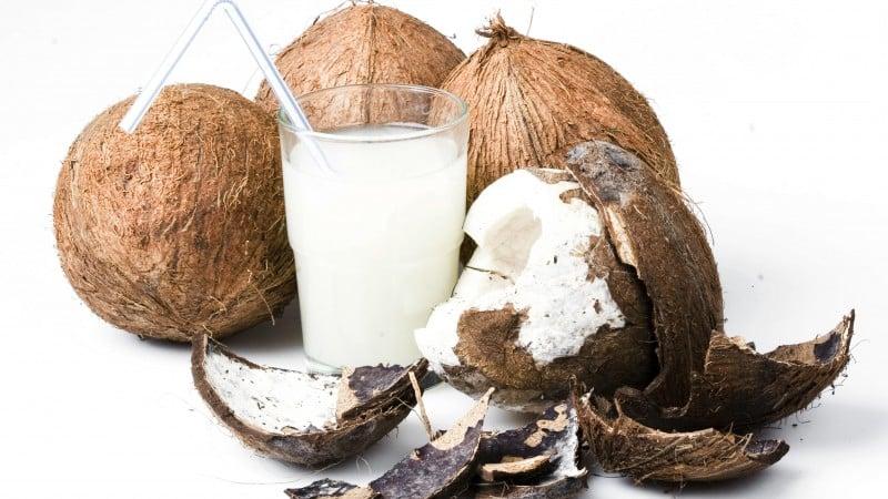 Как долго может храниться кокос дома после вскрытия