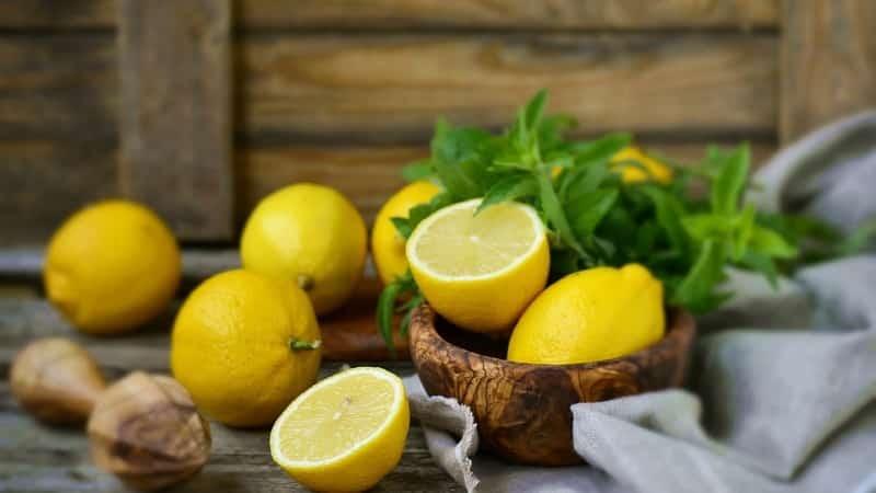 Как сохранить лимон от засыхания в домашних условиях