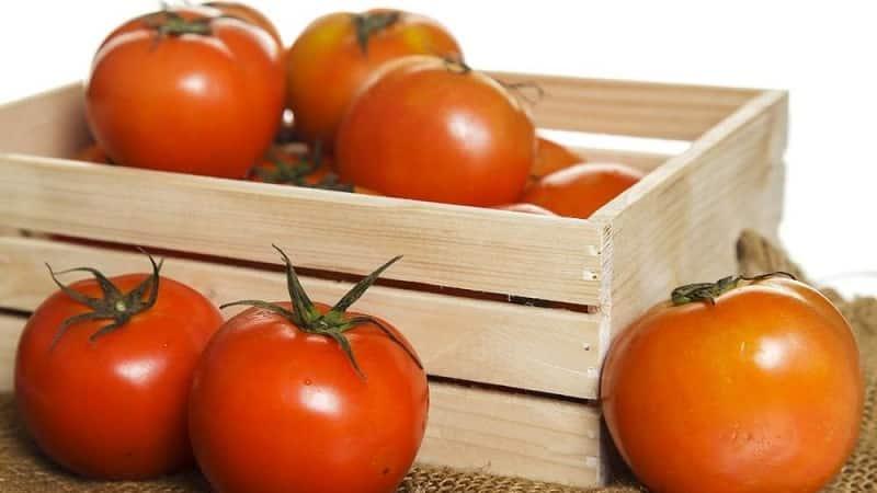 Как сохранить свежие помидоры в квартире, чтобы они не испортились