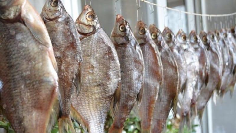 Польза сушеной рыбы, правила хранения продукта и рецепты приготовления блюд из сухой рыбки