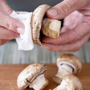 Как сохранить шампиньоны свежими в сыром виде, чтобы они не потемнели