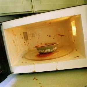 Как избавиться от тараканов в микроволновой печи