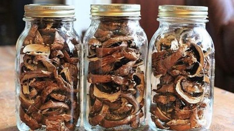 Сколько можно хранить свежие грибы без обработки