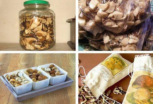 Сколько можно хранить сухие грибы в квартире
