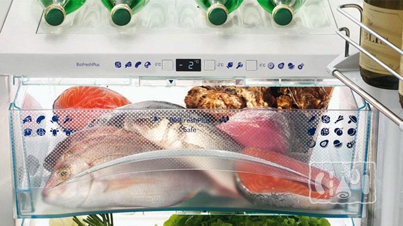 Срок хранения замороженной рыбы в морозильнике