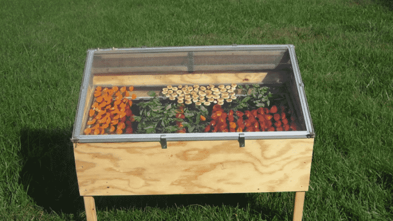 Как сделать сушилку для овощей и фруктов самостоятельно